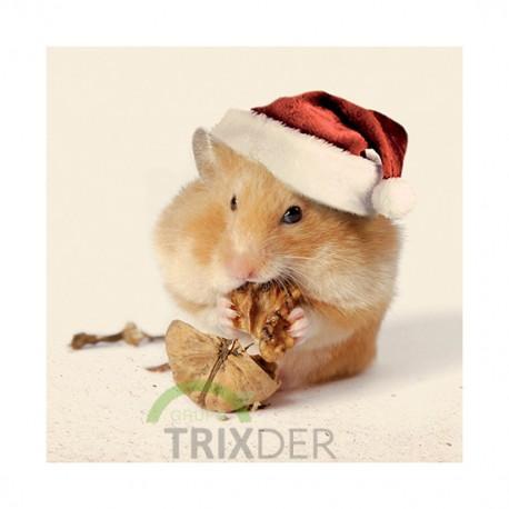 Tarjeta Felicitación Navidad