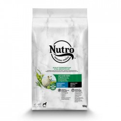 Nutro Wholesome essentials adulto raza grande cordero
