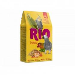 Rio Alimento Huevo Loros