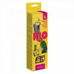 Rio Barritas Fruta Tropical Pequeñas Cotorras