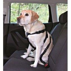 Arnés con Cinturón Seguridad