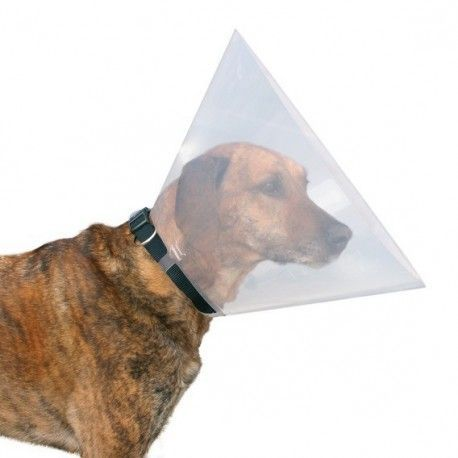 Collar Veterinaio