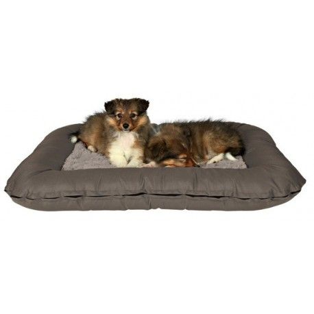 Cueva suave Drago Cosy para perros