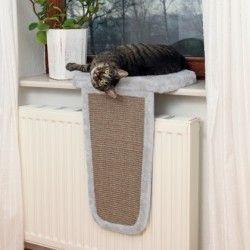 Zona de descanso gatos con rascador