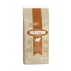Royal Canin Selection Croc Plus High Quality