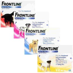 Pipetas Frontline Spot On para perros
