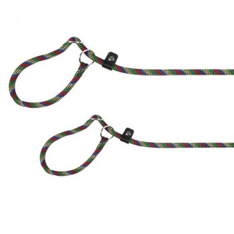Correa Retriever Mountain Rope