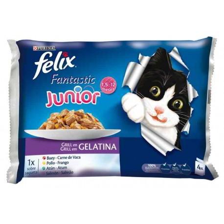 Felix Fantastic Junior
