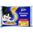 Felix Sensations Crunchy Carnes
