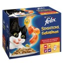 Felix Sensations Gelatinas Carnes Multipack