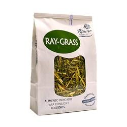 Hierba Ribero Ray-Grass