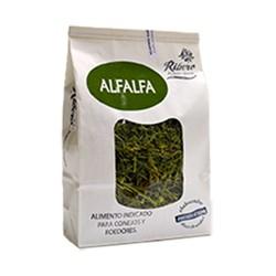 Hierba Ribero Alfalfa